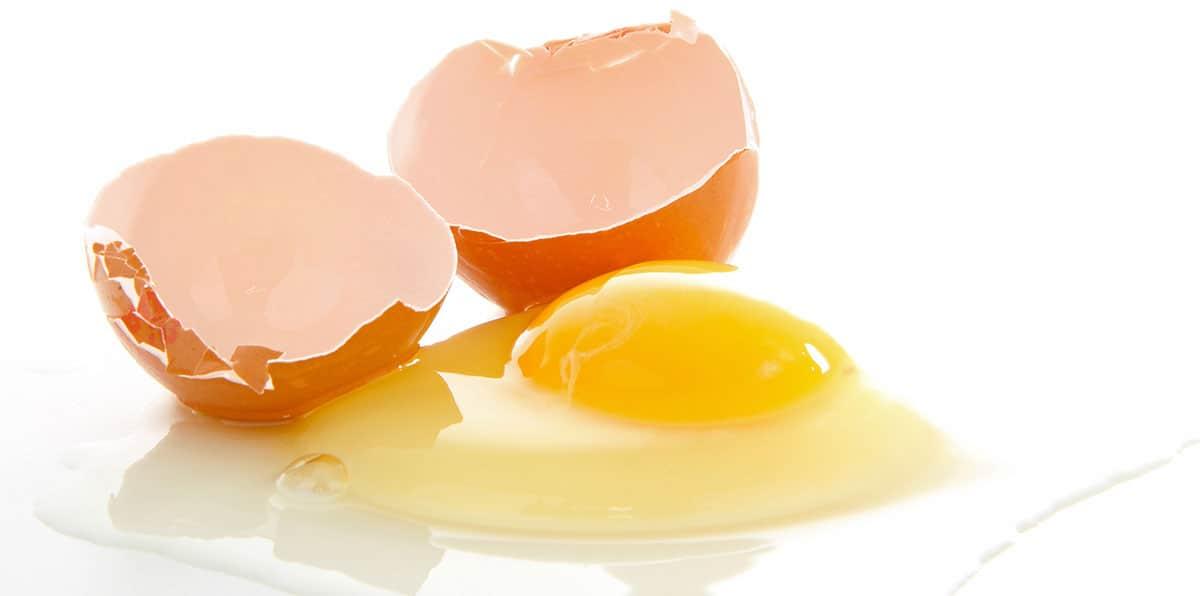 Yellow Egg White